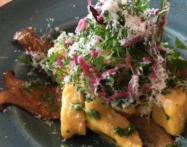 Kürbis-Gnocchi mit Zitronensaitlingen, Kressepesto, Wildkräutersalat und Dressing