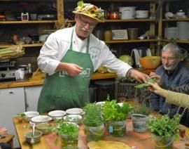 Max' Geschmacks Vorschlag: Wildkräutersalate – Gesundheit die man essen kann
